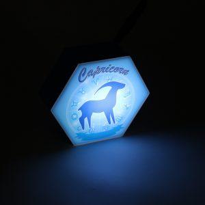 Led lighting Zodiac Sign Capricorn - color Blue - Boy